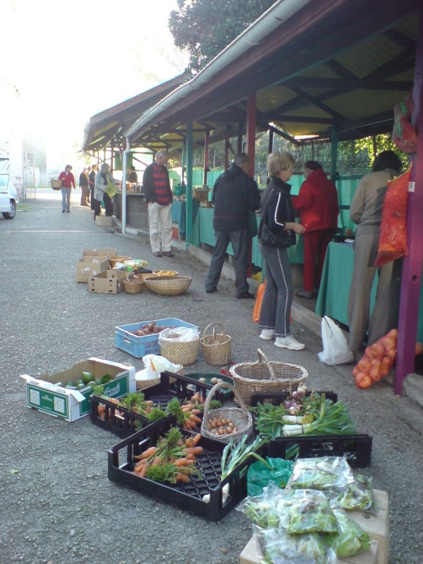 Rondebosch Market