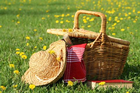 picnics-cape-town