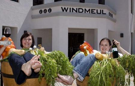 windmeul-market