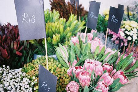 Stellenbosch 'Slow' Market @ Oude Libertas | Western Cape | South Africa